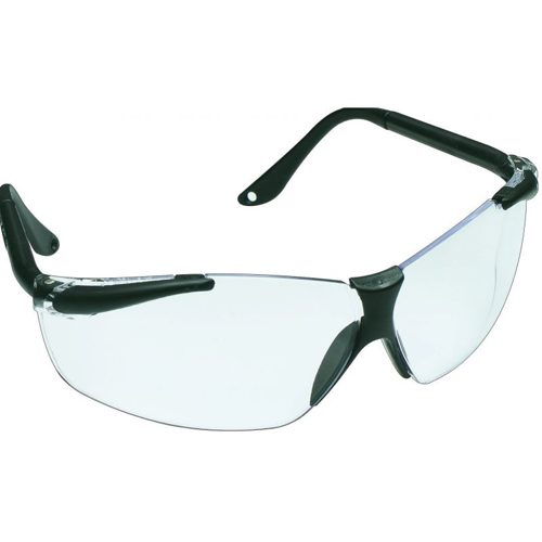 Safety Glasses: SX2000 Anti-Fog Hard Coated with Eye Cord